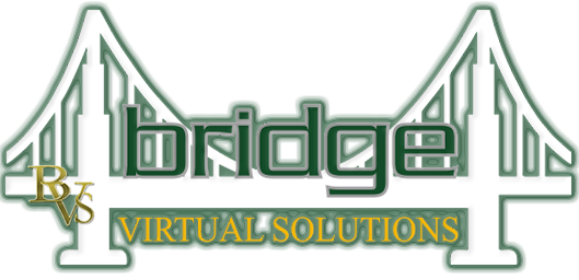 Bridge Virtual Solutions LLC